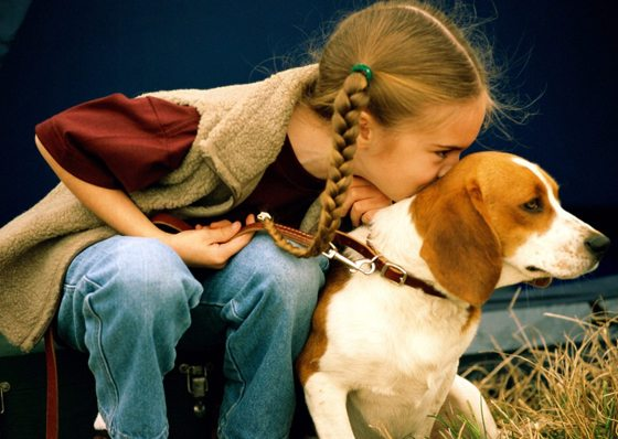 niños quieren mascotas