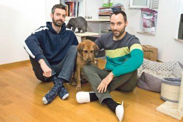 pareja gay consigue acoger en croacia